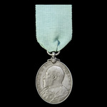 Militia Long Service and Good Conduct Medal, EVII bust, awarded to Private W. Dwyer, 7th Battalio...